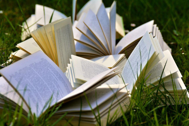 Plus de livres? Lisez en ligne!