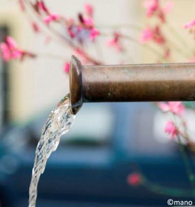 Le chlorothalonil et ses métabolites: point de situation sur le réseau d'eau potable du Service des eaux de Lausanne